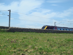 Will Berwick's train service be whittled away as trains sail straight through on some routes to save precious minutes