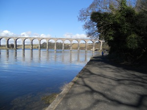Who wouldn't want to run along the banks of the silvery Tweed on such a morning as this?