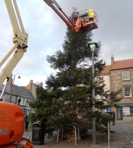 Much heavy plant is required for erecting and decking out a municipal tree.