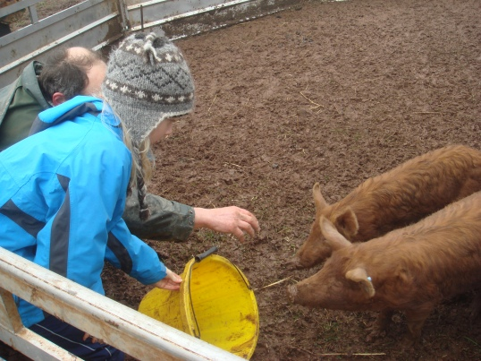 Does staying hands on with animals help us appreciate meat a bit more?