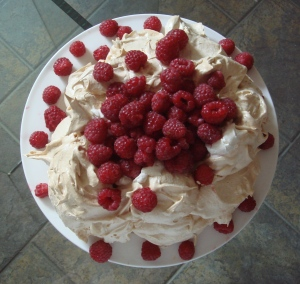 Pavlovas are unpredictable beasties