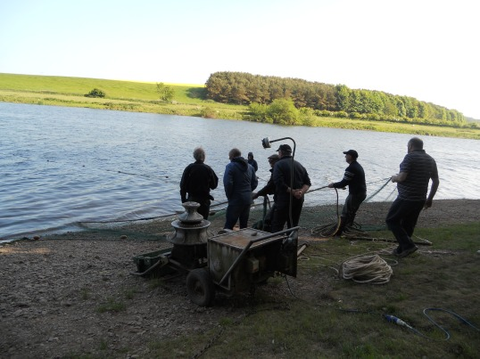 Salmon netting at Paxton House