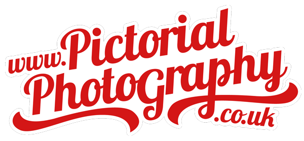 This image has an empty alt attribute; its file name is pictorial_web_logo.png