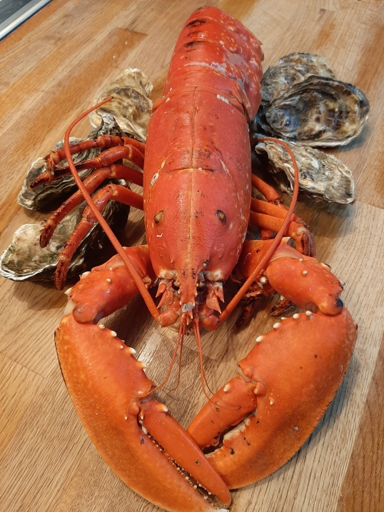 Lobster and oysters of love